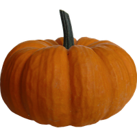 14-2-pumpkin-png-file-thumb.png