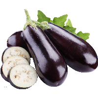 14-eggplant-png-images-download-thumb.png
