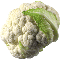 3-cauliflower-png-image-thumb.png